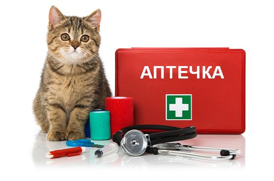 aptechka-dlya-koshki